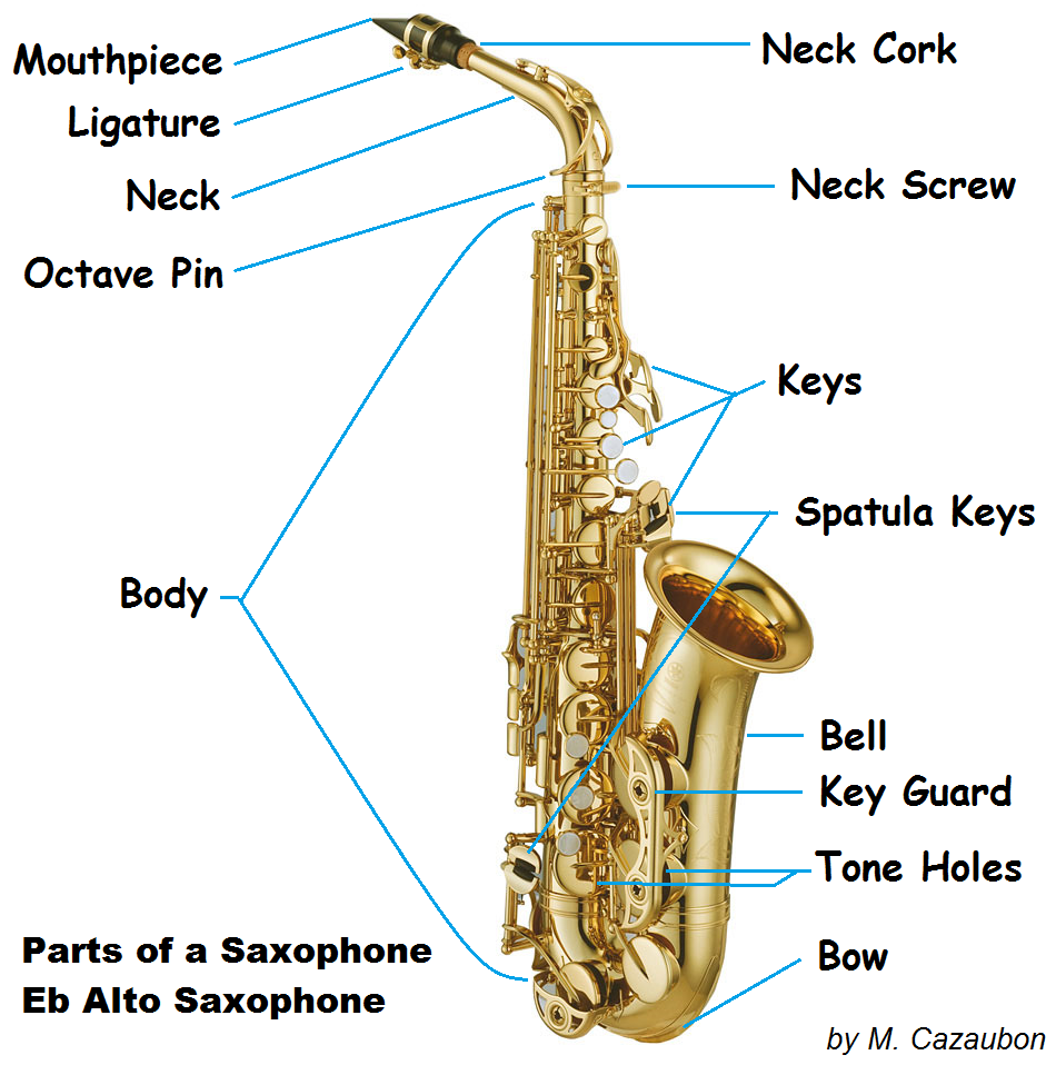 saxophone parts, parts of a saxophone